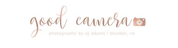 good camera logo